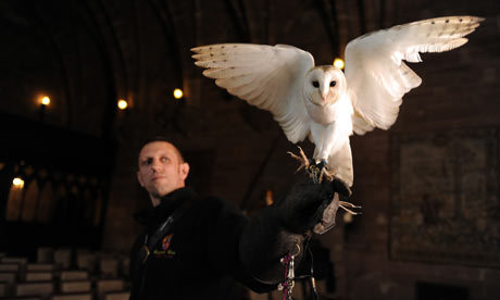 Ollie the barn owl with his handler Mike Roberts in training for the wedding of footballer Wes Brown