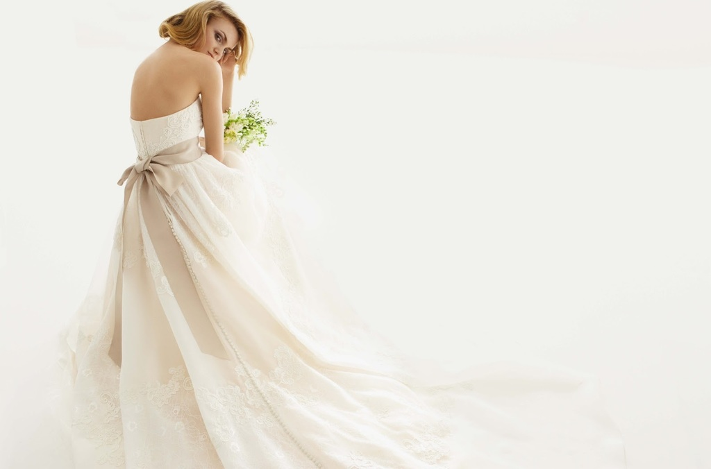 2013-wedding-dress-melissa-sweet-for-davids-bridal-3.full