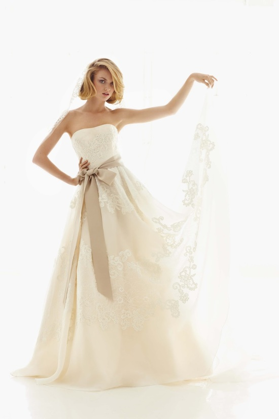 2013 wedding dress Melissa Sweet for Davids Bridal 3