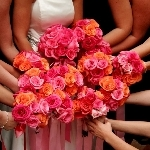 200_roses_and_small_rose_petals_wedding_combo_package_150.full