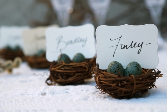Robins egg nest wedding escort card holders