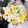 200_roses_and_50_mini_callas_wedding_combo_package_150.square