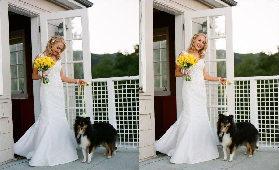 Ceremony-and-reception-wedding-dress-w-dog.full