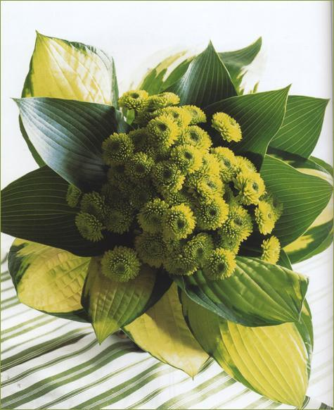 gorgeous green wedding bouquet with button mums & tropical leaves