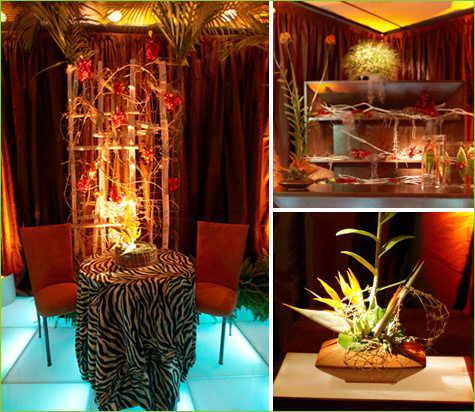 Tropical-themed Room with a Jungle Vibe