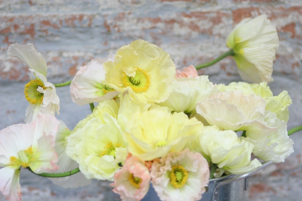 Romantic pastel yellow wedding flower arrangement