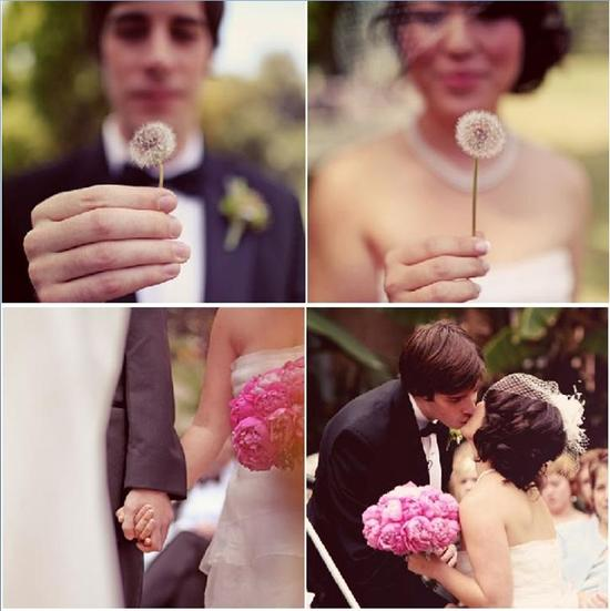 Beautiful bride and groom hold dandelions; bride hold pink bouquet and kisses groom