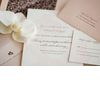 Wedding_invitations_orchid.square