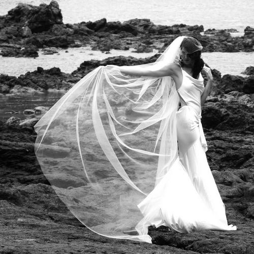 Wedding_ideas_flowing_birdcage_veil.full