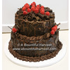 Dark_truffle_chocolate_grooms_cake_raspberries.square