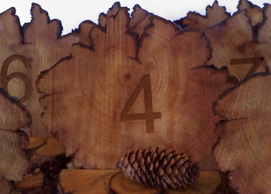 Rustic wood carved wedding table numbers
