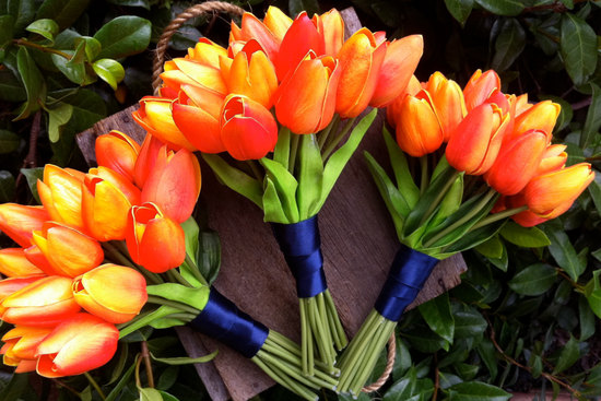 Fresh flower alternatives orange tulip bouquets