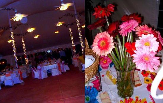 photo of It's A Jaime Thing... A Colorful, Gerbera Daisy Themed Soiree!