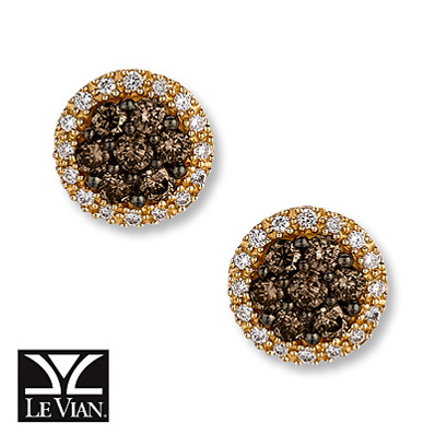 Kay Jewelers Chocolate Diamonds  5/8 ct tw Earrings  14K Honey Gold - More