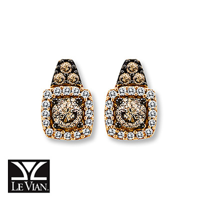 Kay Jewelers Chocolate Diamonds   3/8 ct tw Earrings  14K Strawberry Gold - More