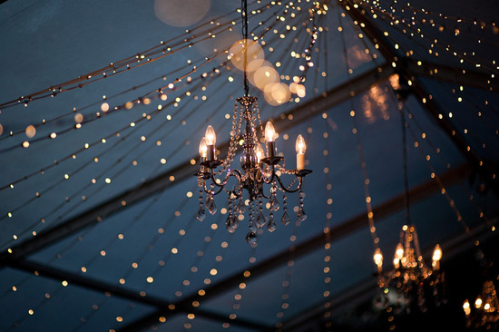 Outdoor wedding tree strung with lights