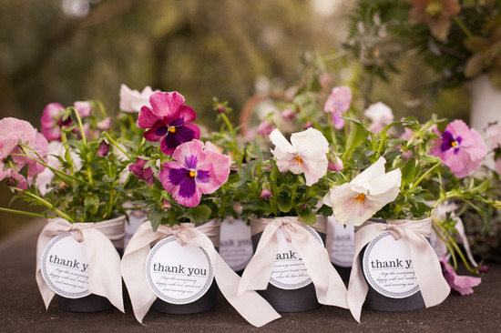Spring Blooms for Wedding Favors