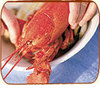 Lobster_shack.square