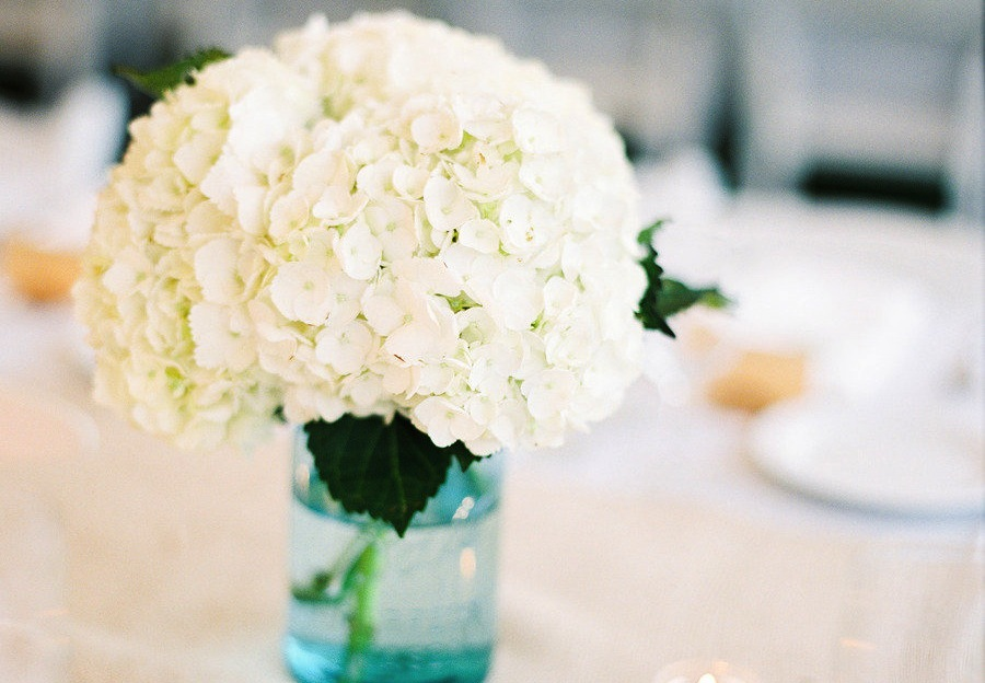 White-hydrangea-wedding-centerpiece-in-blue-mason-jar.full