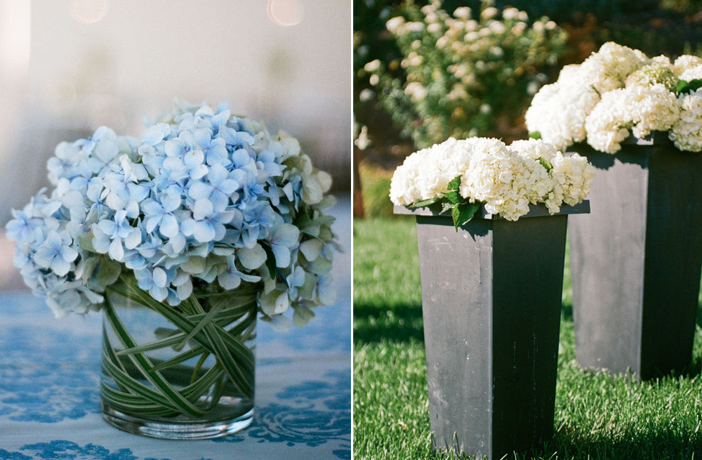 Hydrangea Wedding Flowers Spring Inspiration 1
