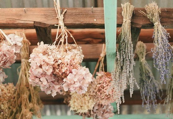 Dried hydrangeas decorate rustic wedding venue
