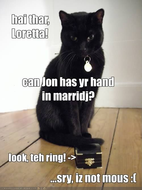 Lolcat-marriage-proposal-2.full