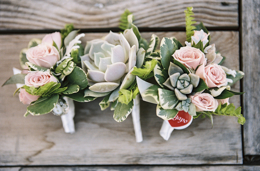 Succulent and rose wedding boutonnieres