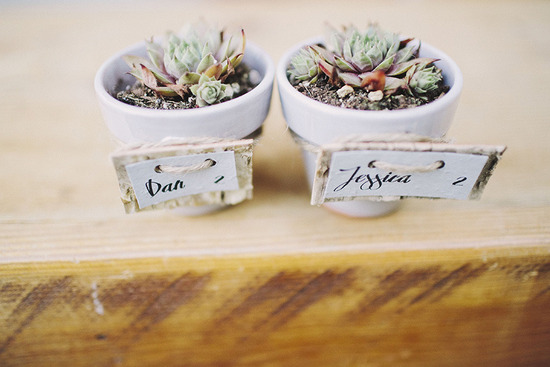 Planted succulent wedding place cards