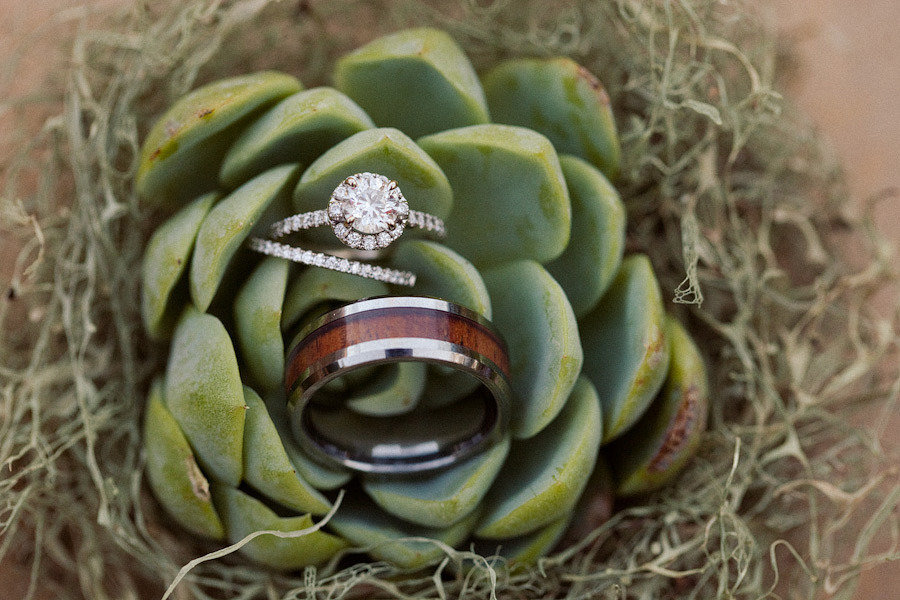 Wedding ring shot on succulent