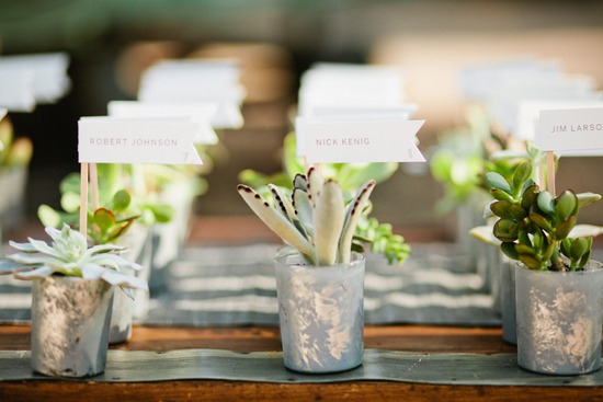 Succulent wedding escort cards favors