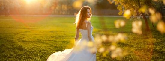 photo of WedSafe Wedding Insurance