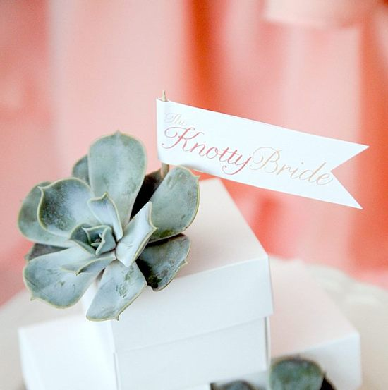 photo of The Knotty Bride wedding drink flags