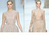 Wedding-dress-neckline-inspiration-elie-saab-2012-couture.square