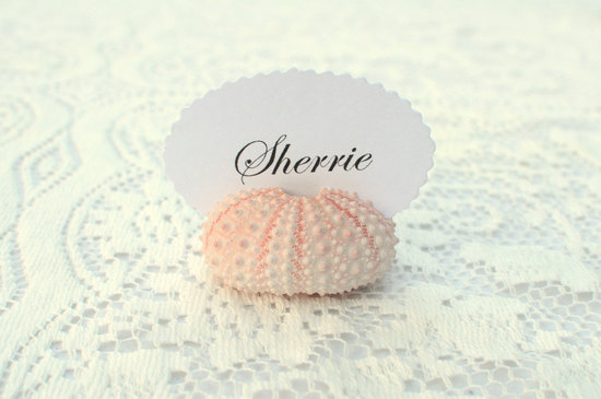 sea urchin escort card holder