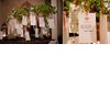 Romantic-wishing-tree-wedding-reception.square