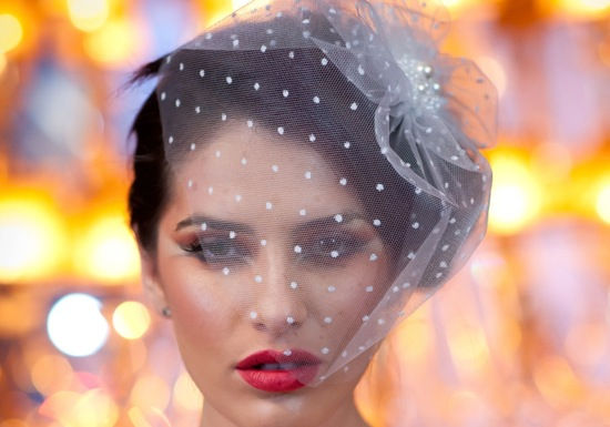Dotted tulle birdcage bridal veil
