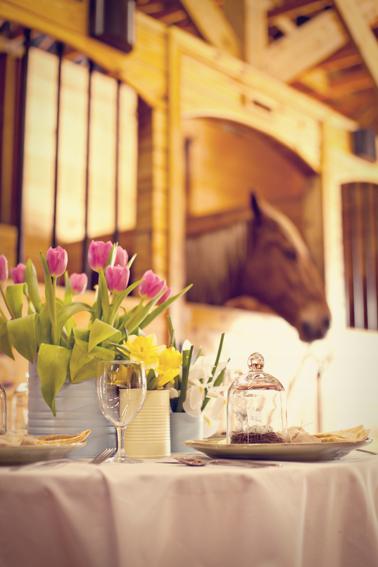 table and horse