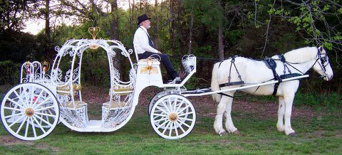 new carriage