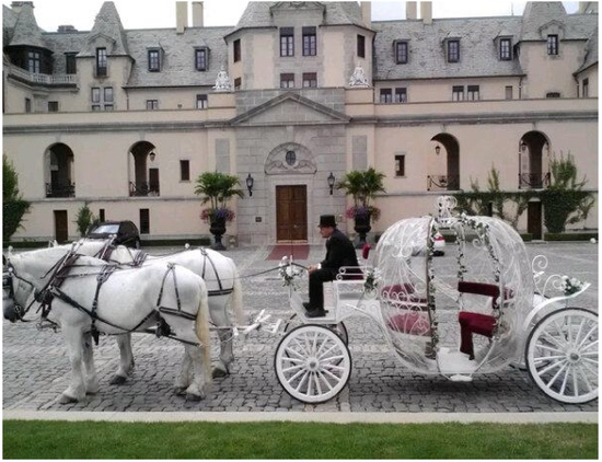 Cinderella Carriage at Oheka Castle 2