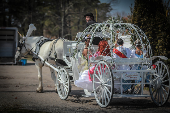 April 7 Carriage Ride