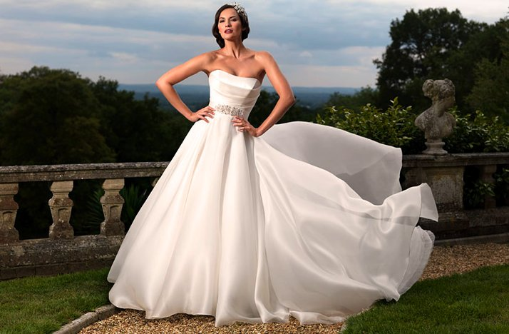 2012 wedding dress suzanne nevil strapless