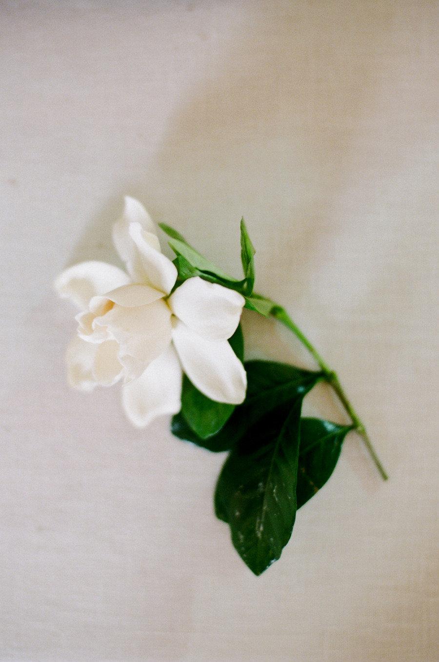Elegant-gardenia-groom-boutonniere.full
