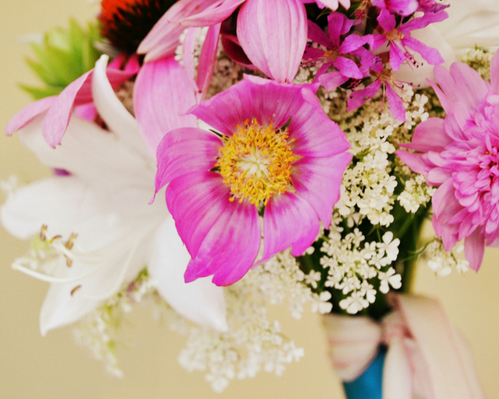 hot pink cosmo wedding flower bouquet