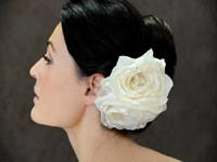 Ericakoeslerflowera-5395.full