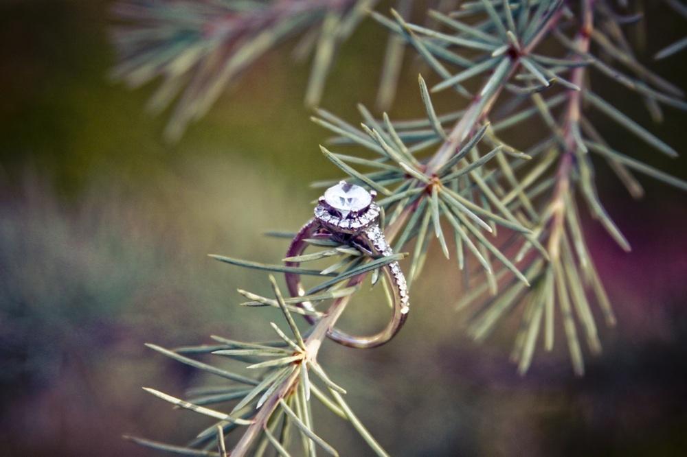 Wedding-photography-ideas-engagement-session-inspiration-7.full