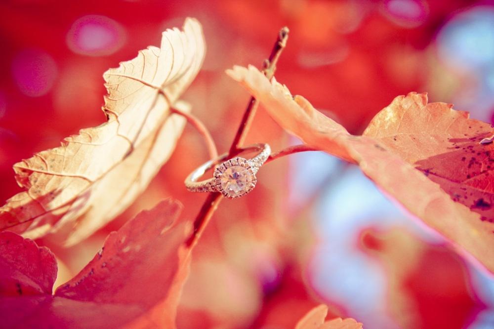 Wedding-photography-ideas-engagement-session-inspiration-6.full