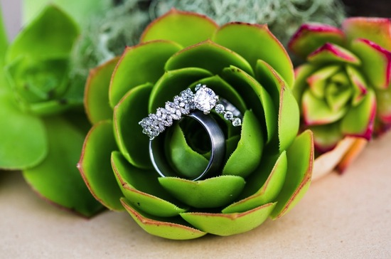 engagement ring wedding band photo succulent love