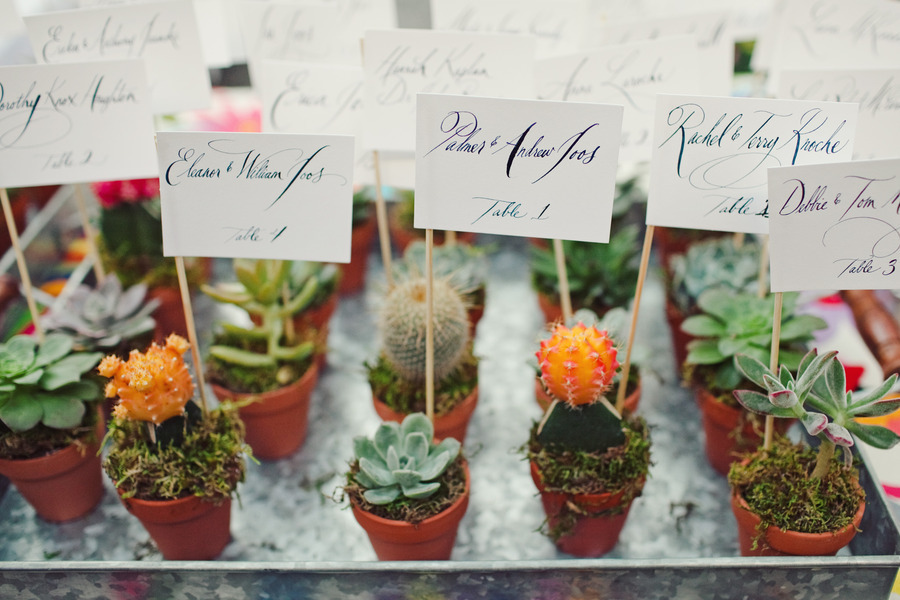 Potted Plant Wedding Favors Double As Cards