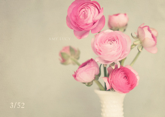 Romantic pink ranunculus simple wedding centerpiece