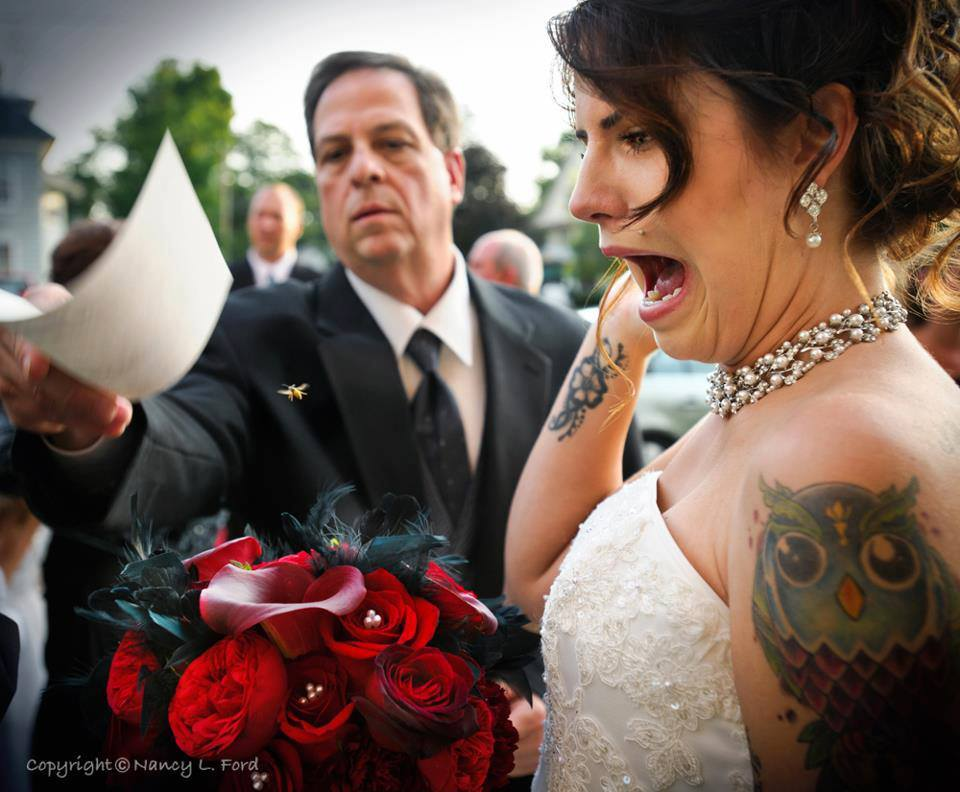 Priceless-wedding-photo-bride-and-the-bee.full